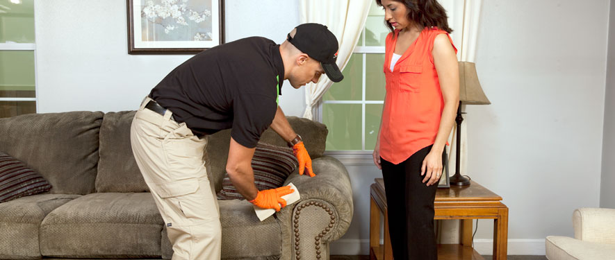Antioch, TN carpet upholstery cleaning